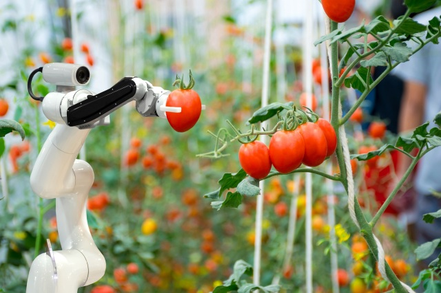 Agriculture_Renesas_ss